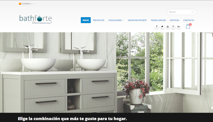 diseno-web-wordpress-bathforte